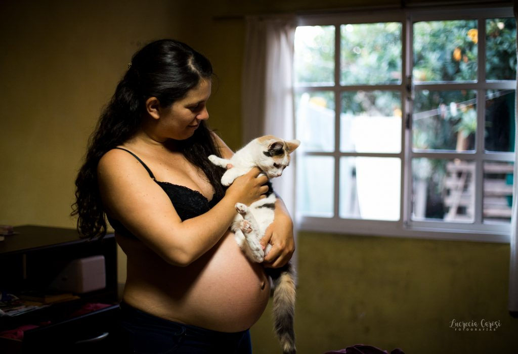 maternity photoshoot including your pets, because your cat is also part of your family